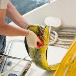 Опасность на рыбалке — Осторожно, клещи